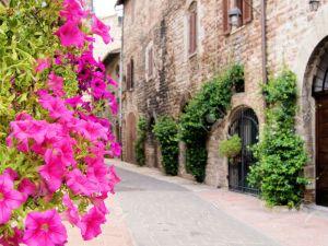 13066399-Flores-a-lo-largo-de-una-calle-medieval-en-As-s-Italia-Foto-de-archivo
