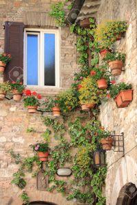 14367966-Rinc-n-medieval-con-flores-y-macetas-en-As-s-Italia-Foto-de-archivo