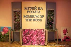 221_002_Muzej_na_rozata