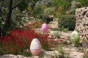Jardin lirios y rosas Benissa (9)