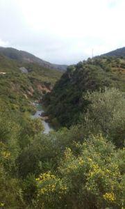 viaje Canón Buitreras