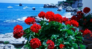 vistas-de-la-playa-desde-el-hotel-villa-santc2b4andrea-en-taormina-playa_mg_9806