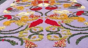 alfombras_flores_corpus_christi_san_cristobal_de_la_laguna_t3800932.jpg_1306973099