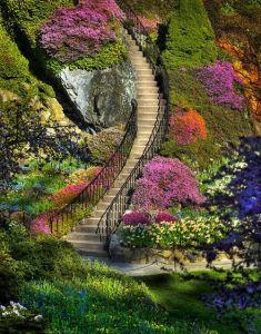 escaleras 4