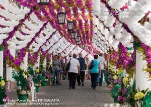 Festas_do_povo_Calles_Campo_Maior