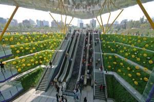 foto flores al lado escaleras