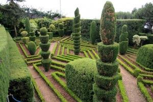 jardin-botanico-de-funchal-madeira-portugal