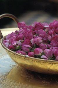 marruecos rosas