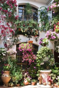 patio córdoba