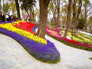 tulipanes-estambul-2014-25