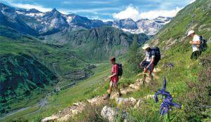 balade-pays-basque-camping-lamer