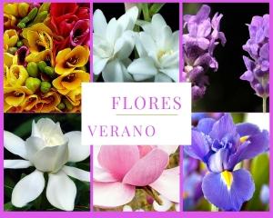 flores-verano