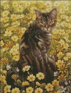 gato punto cruz 2