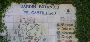 Jardin-botanico-castillejo-cadiz-636x303