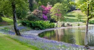 the_gardens_box_image