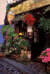 floristería 3