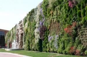 jardin-vertical-3