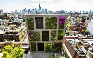 jardin_vertical-terraza-atico