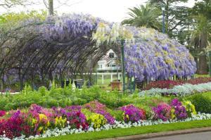 QB0085 The Arbor Queens Park Gardens Toowoomba QLD, Flower Festival, Events Brisbane QLD. _DSC3791