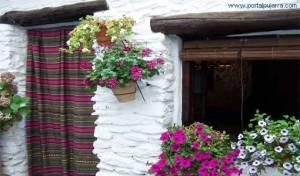 casas-flores