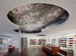 diseño farmacia techo austria