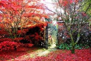 walled-garden3
