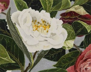 36_campbell_camellias_2006_print