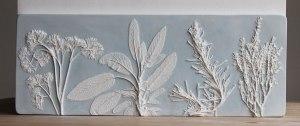 fosiles-flores-molde-escayola-rachel-dein-9