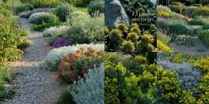 jardin-sin-riego-jardin-seco-collage2