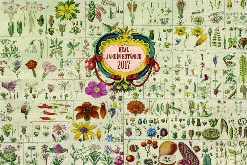 Creciendoentreflores la vida en el campo y el amor por for Calendario jardin botanico 2016
