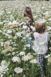 ninos-entre-flores