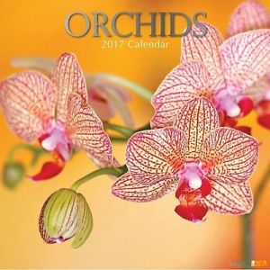 orchids-calendario-de-pared-2017
