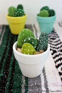 pi-cactus-2