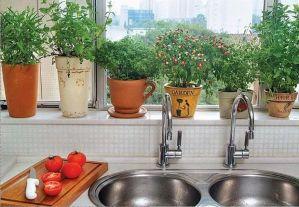 un-jardin-en-tu-cocina-lovelivedream-10