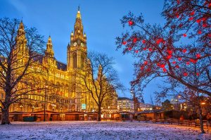 vienna-town-hall-with-christmas-market-at-dusk-austria
