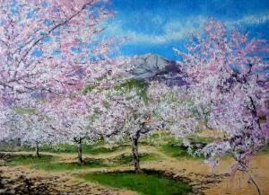bosque-primavera