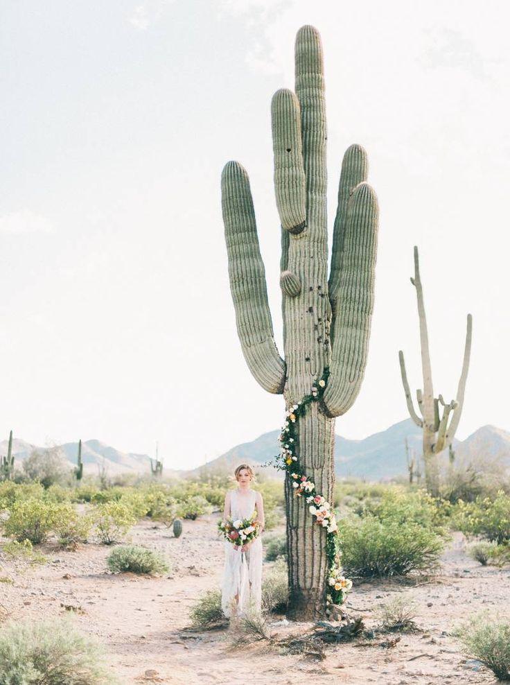 Cactus creciendoentreflores for Jardin cactus madrid